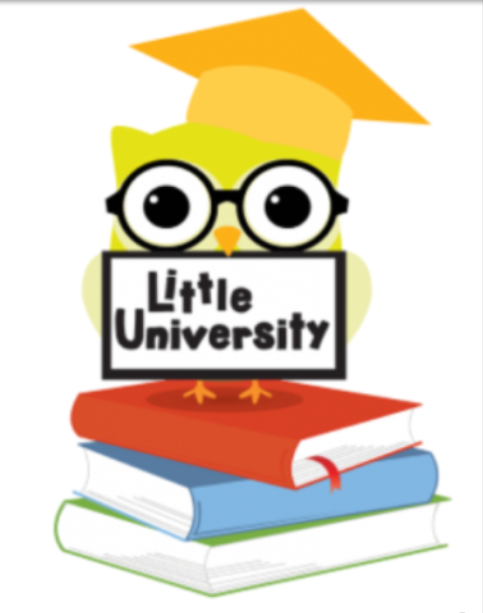 "Yellow owl with glasses and a graduation cap, standing on three books and holding a sign reading ""Little University"""