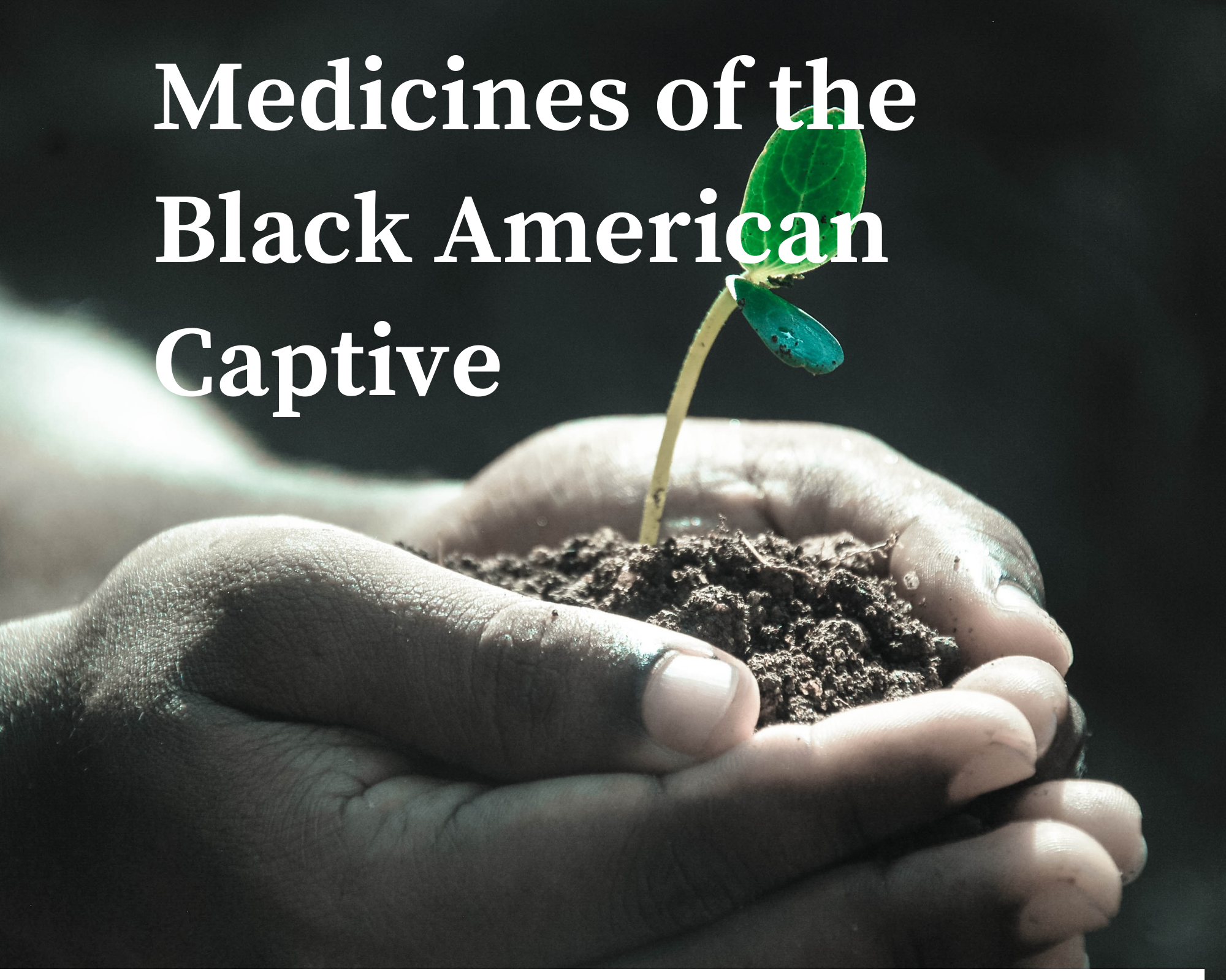 Medicines of the Black American Captive with Community Herbalist Monticue Connally