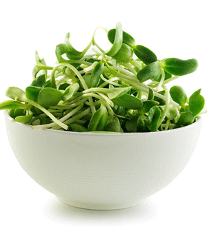 A photograph of a white bowl filled with microgreens.