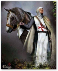 a knight templar and horse
