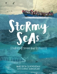 "Cover of ""Stormy Seas,"" available from DPL."
