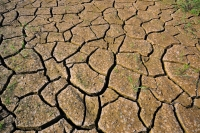 Image of cracked, dry earth.