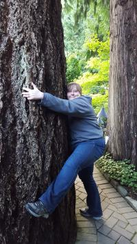 Beautiful Librarian hugs enormous Redwood with gusto in Victoria, British Columbia, Canada