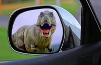 Dinosaur in a rear view mirror