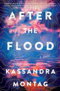 cover: After the Flood