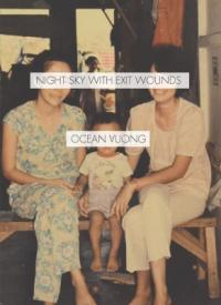 cover: night sky with exit wounds
