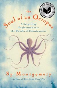 cover: the soul of an octopus