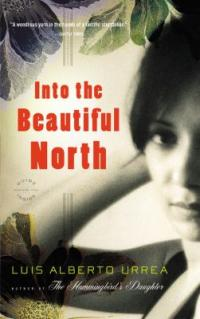 cover: into the beautiful north