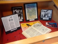 Lord of the Flies display