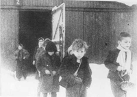 Children shortly after being freed from Auschwitz Concentration Camp