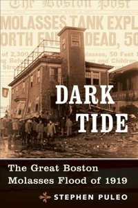 Dark Tide: The Great Boston Molasses Flood of 1919 by Stephen Puleo