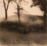 "R. Skip Kohloff, Untitled, from ""Gardens of the Fleeting Moment,"" 2002, Quadtone"