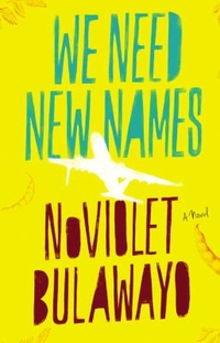 Book Cover Image: We Need New Names