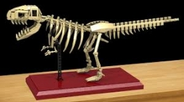 Tyrannosaurus Skeleton made with LEGO® Building Blocks