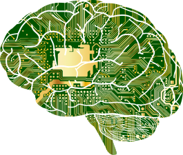 Brain with circuit board