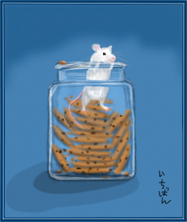 Mouse in a cookie jar