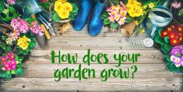 "Flowers and flower pots on the ground with words, ""How does your garden grow?"""