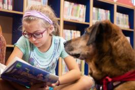 Girl practicing reading with dog