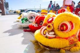 Lion Dance Costumes