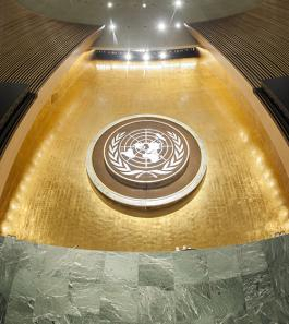 image: un general assembly