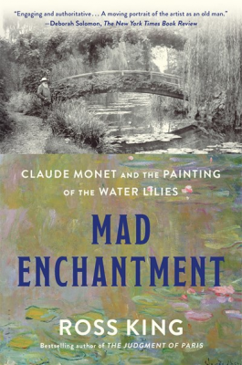 cover: mad enchantment
