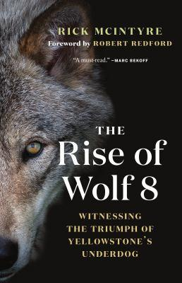 cover: the rise of wolf 8