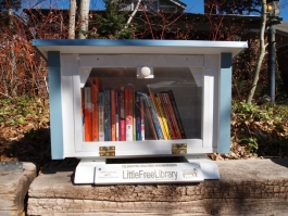 Our Little Free Library by Robin Filipczak