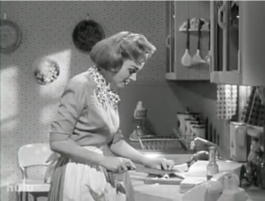 Still from The Donna Reed Show