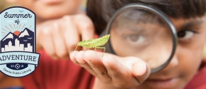 Young boy looking at a bug with a magnifying glass