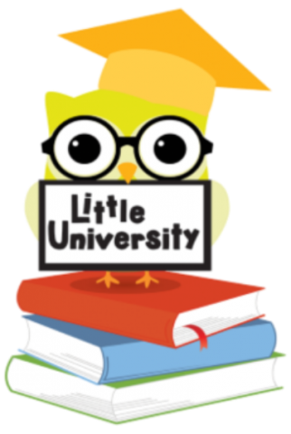 Little University Owl